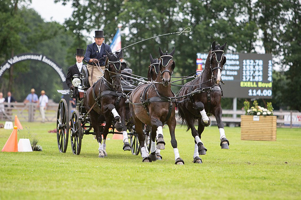 Zilco Harness for Winner Horse Teams Marathon / Zilco Europe will be awarding the winner of the Horse Teams Marathon phase at Driving Valkenswaard International 2019 a bespoke set of Zilco Classic team harness.